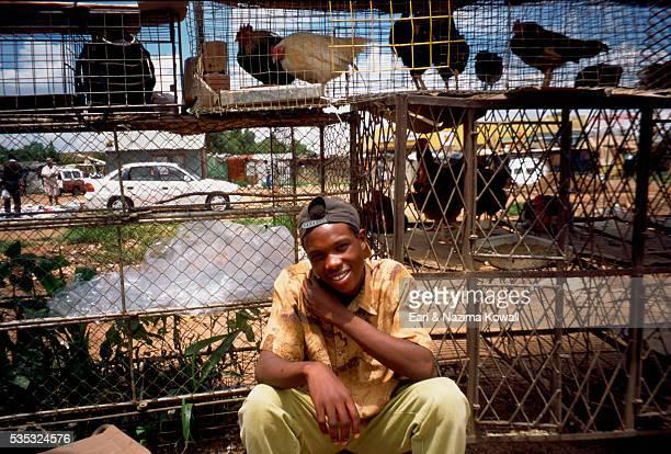 Market Vendor Selling Live Chickens