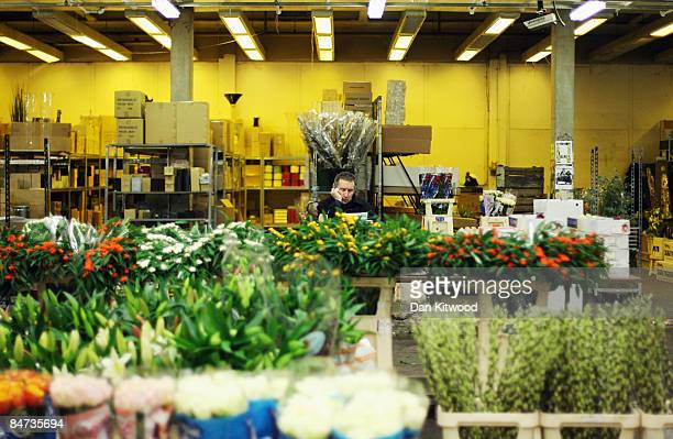 A market vendor worksat his stall in New Covent Garden Flower Market on February 11 2009 in London England New Covent Garden Flower Market is...