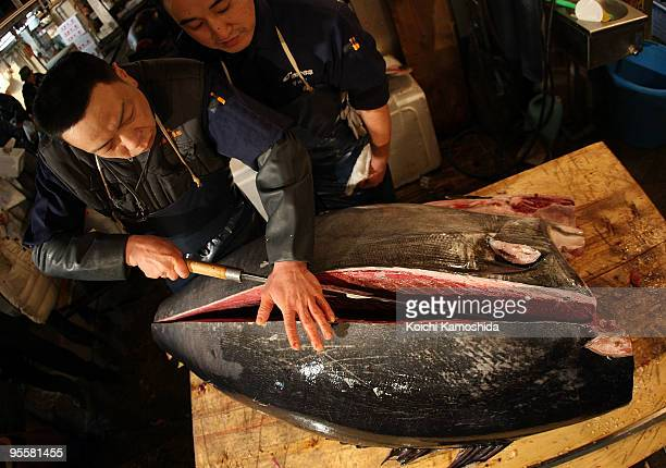A market wholesaler cuts up a 232plus kilogram bluefin tuna during the new year's first auction at the Tsukiji fish market on January 5 2010 in Tokyo...