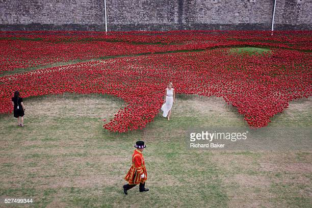 Marking the centenary of the beginning of the First World War in 1914, a Tower of London Beefeater walks past TV presenters among some of the 888,246...
