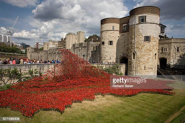 Marking the centenary of the the beginning of the First World War in 1914, ceramic poppies created by artist Paul Cummins, recreate a river of blood...