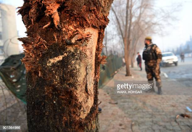 Marks on a tree are seen as Afghan security personnel investigate the site of the January 4 suicide attack in Kabul on January 5 2018 A suicide...