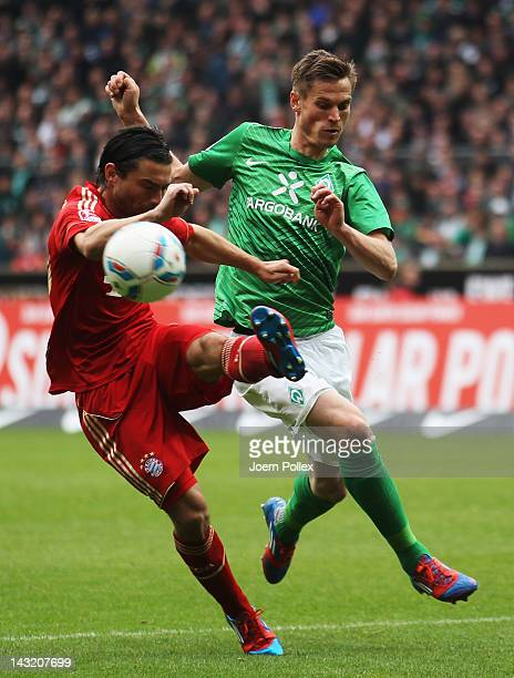 Markus Rosenberg of Bremen and Daniel Pranjic of Muenchen battle for the ball during the Bundesliga match between SV Werder Bremen and FC Bayern...