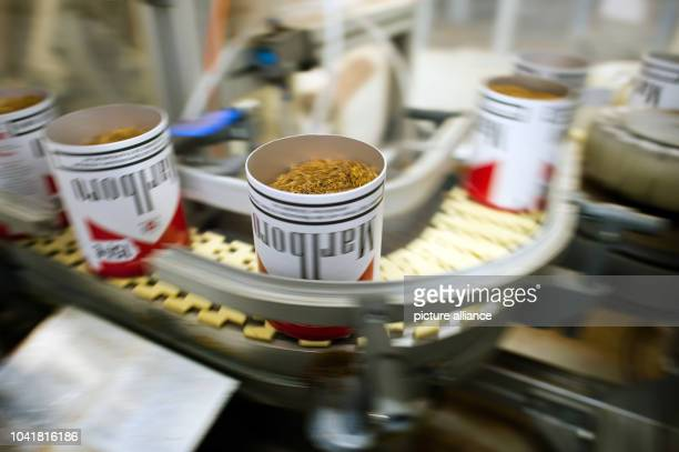 Marlboro boxes are filled with tobacco in the tobacco processing department of the f6 cigarette factory in Dresden Germany 22 January 2014 Photo Arno...