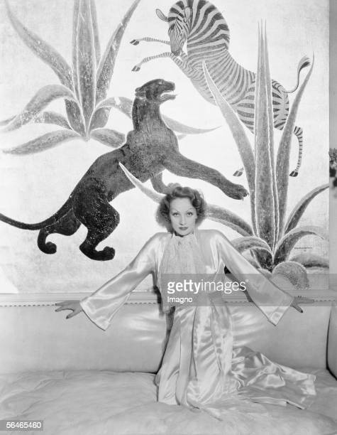 Marlene Dietrich german/american actress in her house in Beverly Hills Around 1935 Photography [Marlene Dietrich deutsch/amerikanische...
