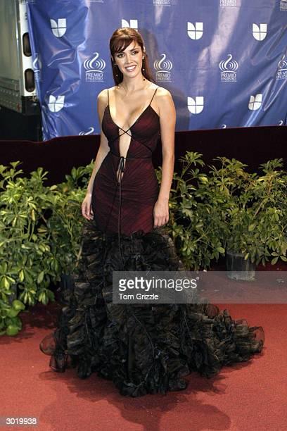 Marlene Favela walks the red carpet at the 2004 Univision Awards Premio Lo Nuestro a la Musica Latina February 26 2004 in Miami Florida
