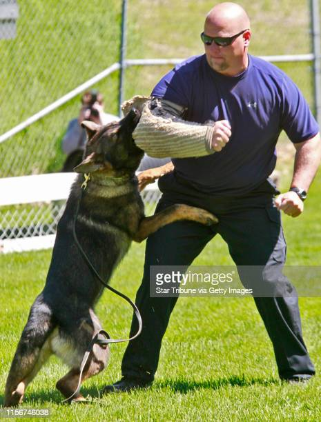 Marlin Levison• mlevison@startribune.com Seventeen police officers from the upper midwest and their dogs received diplomas after graduating...