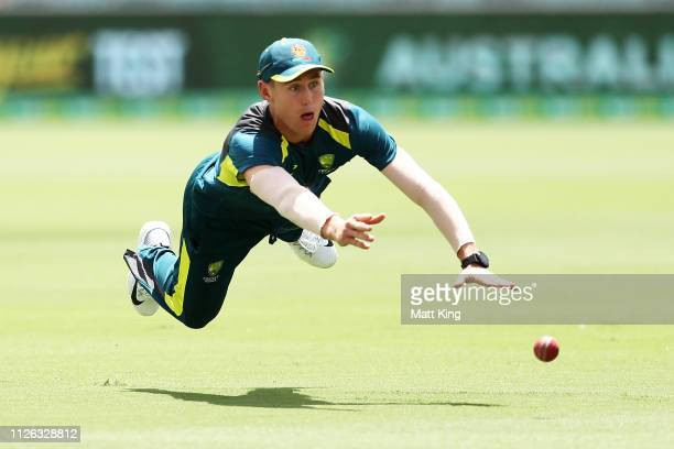 Marnus Labuschagne fields during an Australian fielding session at Manuka Oval on January 31 2019 in Canberra Australia