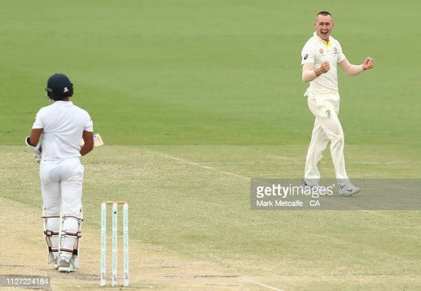 Marnus Labuschagne of Australia celebrates taking the wicket of Kusal Mendis of Sri Lanka during day four of the Second Test match between Australia...