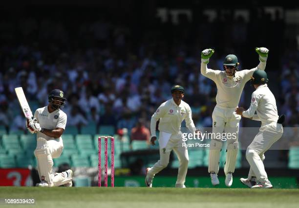 Marnus Labuschagne of Australia takes a catch to dismiss Hanuma Vihari of India off the bowling of Nathan Lyon of Australia during day two of the...