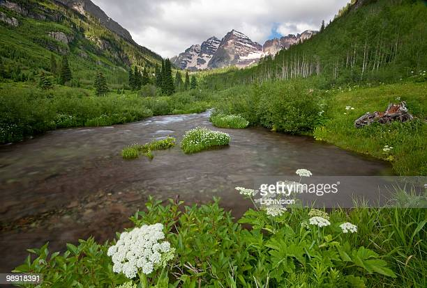 maroon bells in aspen, colorado - maroon bells stock pictures, royalty-free photos & images