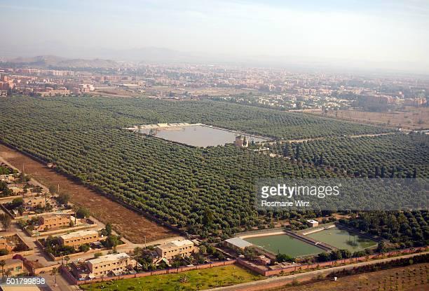 Marrakech aerial view: Menara Gardens.