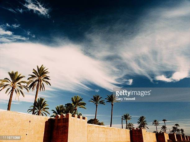 marrakesh city wall and palm trees - yeowell stock pictures, royalty-free photos & images