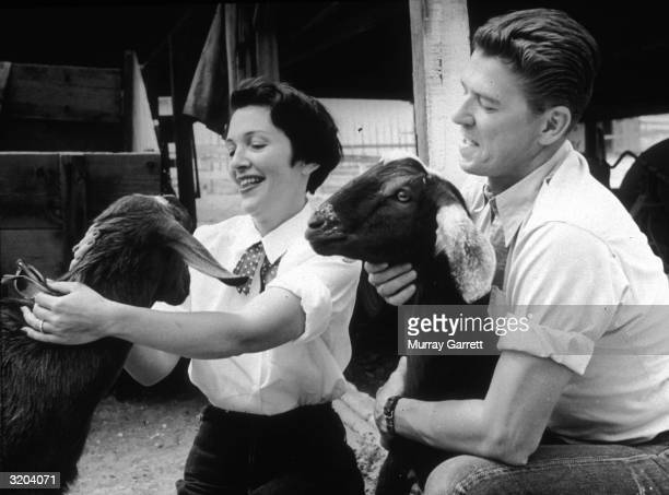 Married American actors Nancy and Ronald Reagan pet two goats at their ranch in Malibu California Both wear jeans and their shirt sleeves rolled up