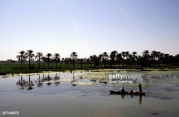 Marsh Arab family returns home in their boat. The marshes had been largely drained by the Saddam Hussein regime in order to bring their unruly and...