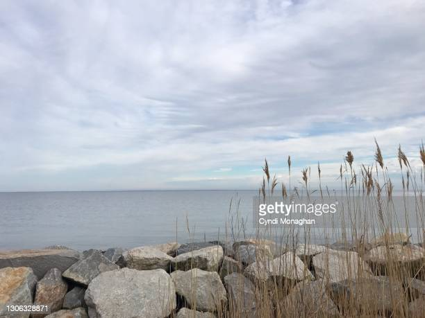 marsh grass and jetty rocks, north point state park - maryland us state stock pictures, royalty-free photos & images