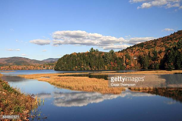 marsh lands along the androscoggin river - cappi thompson stock pictures, royalty-free photos & images