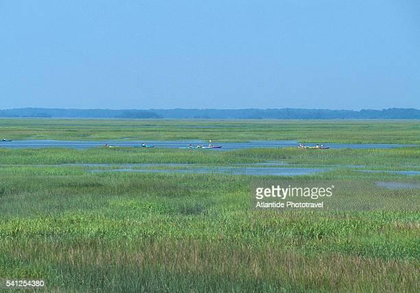 marsh landscape near village creek - saint simon's island stock pictures, royalty-free photos & images