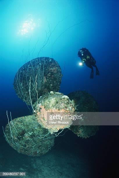 marshall islands, bikini atoll, female diver exploring battleship - bikini atoll stock photos and pictures