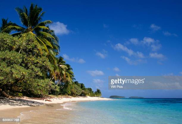 Beach and palm trees on Calalin Island a 'Picnic Island' on Majuro Atoll