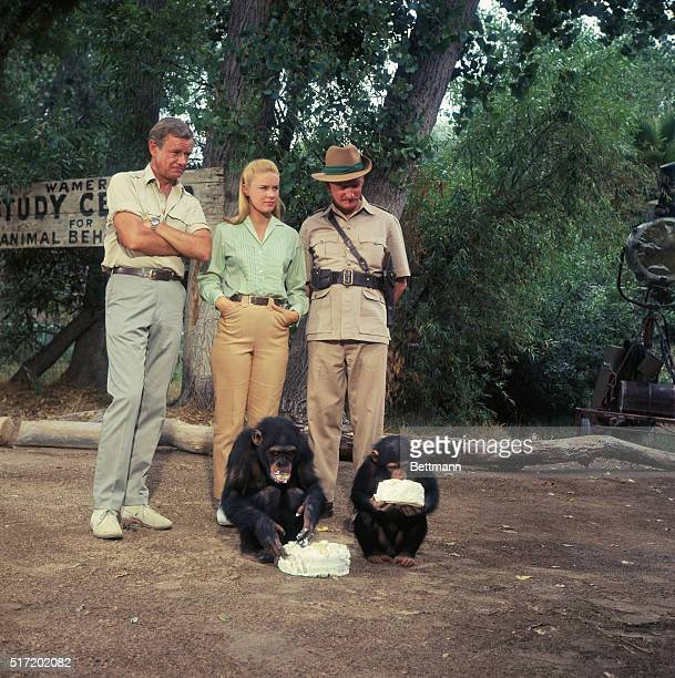 Marshall Thompson Cheryl Miller and Hedley Mattingly in a still from the television series Daktari