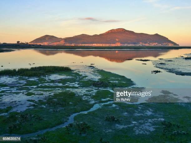 Marshes of Santoña, Cantabria, Spain