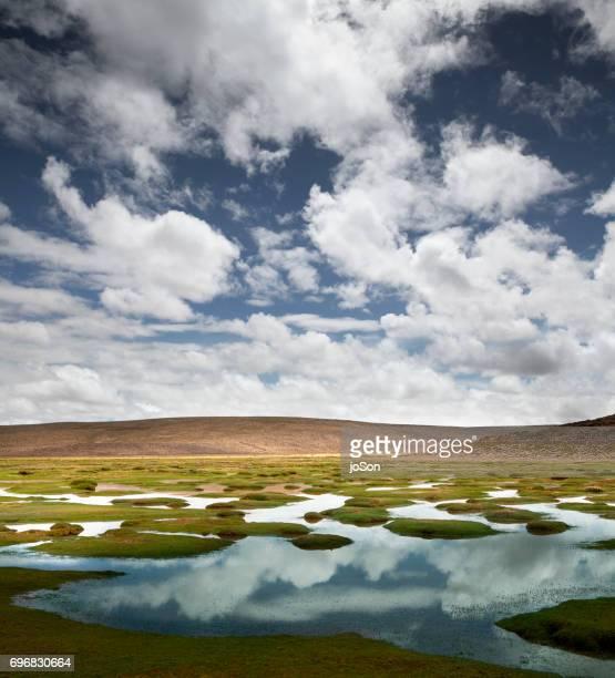 Marshland at Salinas Y Aguada Blanca National Reserve