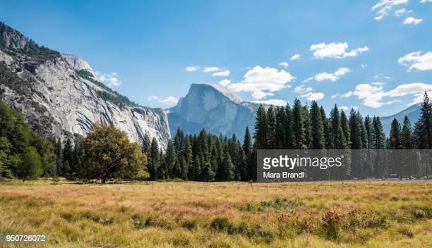 Marshlands, mountains, Half Dome behind, Yosemite Valley, Yosemite National Park, UNESCO World Heritage Site, California, USA