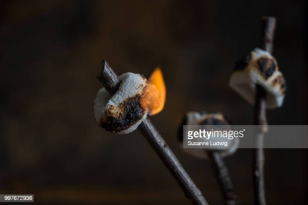marshmallow - susanne ludwig stock pictures, royalty-free photos & images