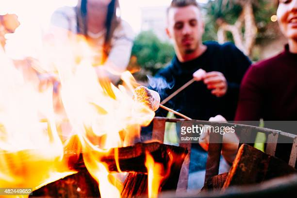 Marshmallows In The Fire