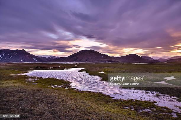 Marshy field in rural landscape