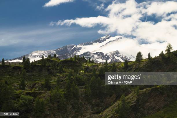 martell valley, south tyrol, italy - martell valley italy stock photos and pictures