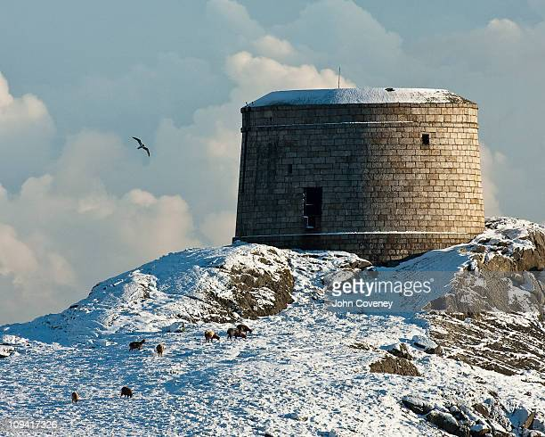 martello tower on dalkey island - dalkey stock pictures, royalty-free photos & images