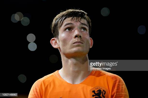 Marten de Roon of Holland during the UEFA Nations league match between Holland v Germany at the Johan Cruijff Arena on October 13 2018 in amsterdam...