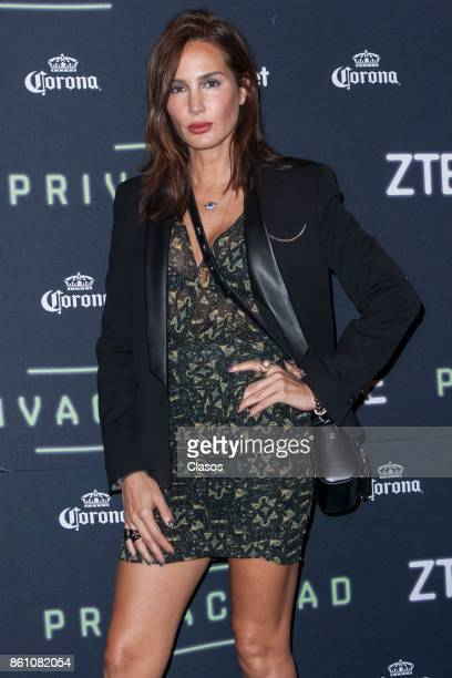 Martha Cristiana poses during the red carpet of the play 'Privacidad' at Teatro de los Insurgentes on October 12 2017 in Mexico City Mexico