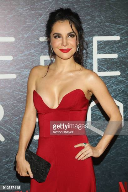 Martha Higareda attends the premiere of Netflix's Altered Carbon at El Plaza Condesa on January 25 2018 in Mexico City Mexico