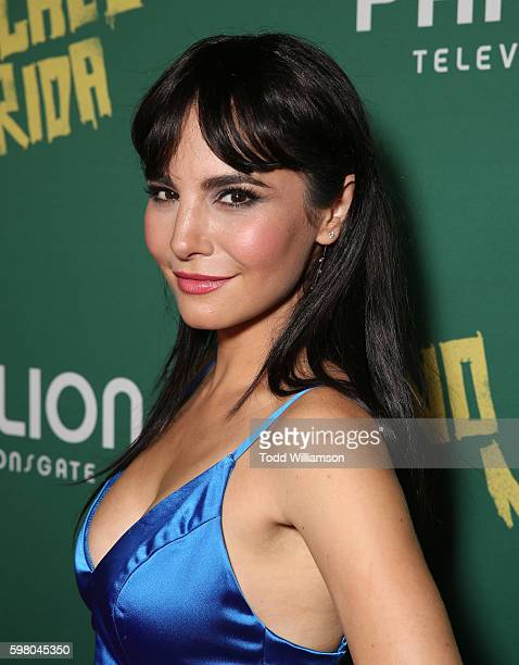 Martha Higareda attends the World Premiere of Pantelion's 'No Manches Frida' on August 30 2016 in Los Angeles California