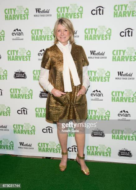 Martha Stewart attends the 23rd Annual City Harvest 'An Evening of Practical Magic' Gala at Cipriani 42nd Street on April 25 2017 in New York City
