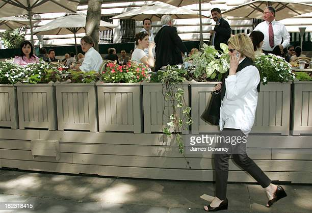 60 Top Martha Stewart Sighting In New York City June 2 2004