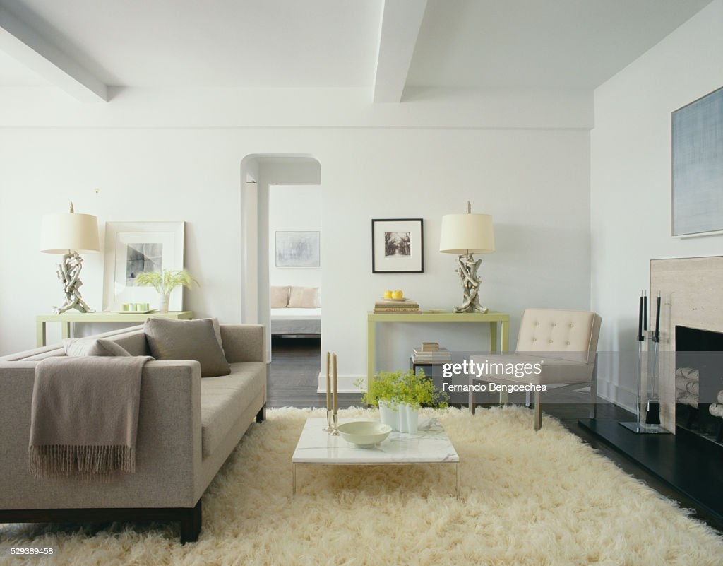 Martha Stewart Living Contemporary Living Room High-Res ...