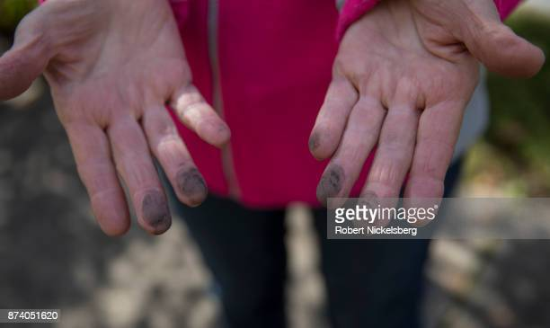 Marti Blake shows coal soot from her home that's in front of the 47-year old Cheswick coal-fired power plant October 26, 2017 in Springdale,...