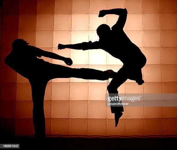 Art Martial Silhouette
