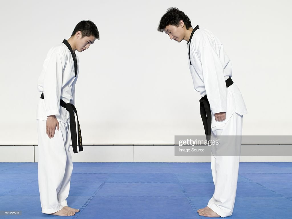 Martial artists bowing : Stock Photo