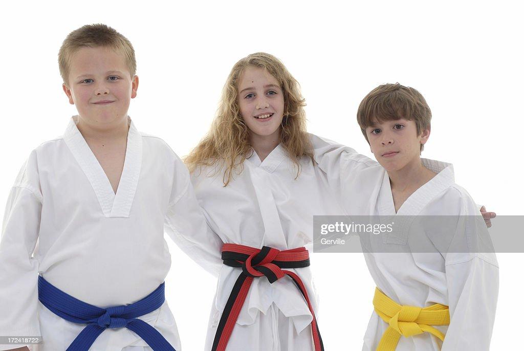 Martial arts friends : Stock Photo