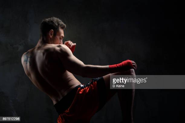 martial arts - mixed martial arts stock pictures, royalty-free photos & images
