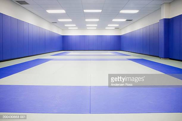 martial arts practice room - martial arts stock pictures, royalty-free photos & images