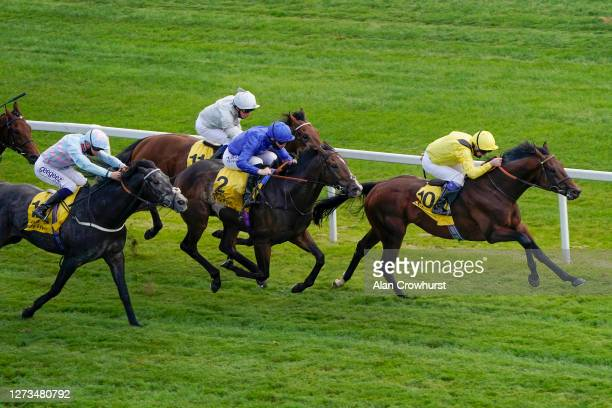 Martin Dwyer riding Ilaraab win The Dubai Duty Free Handicap at Newbury Racecourse on September 19 2020 in Newbury England Owners are allowed to...