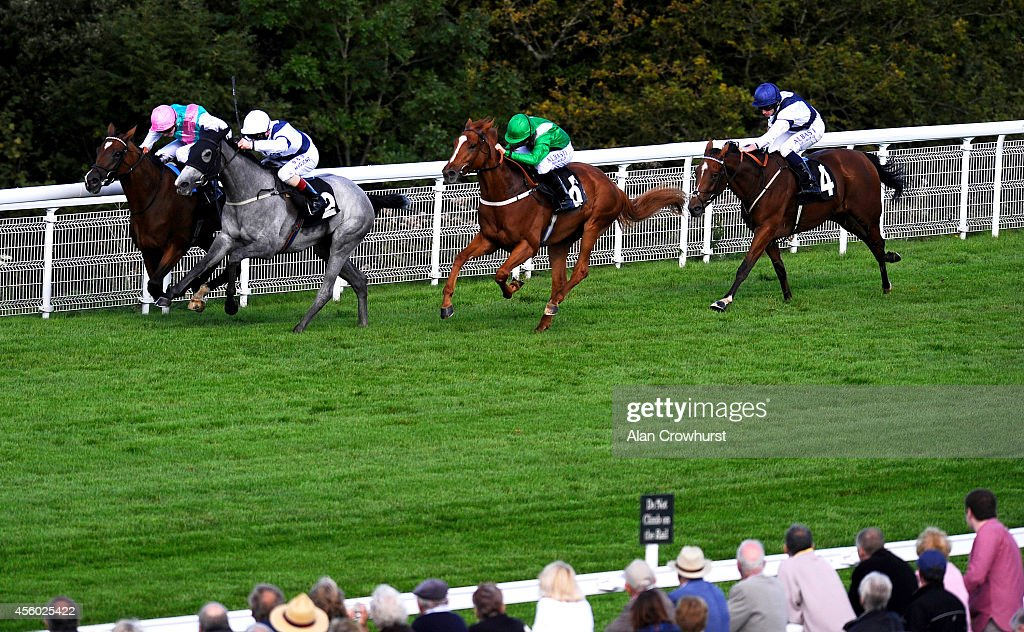 Martin Dwyer riding Serena Grae (2L) win The Hildon Natural Mineral Water Stakes at Goodwood racecourse on September 24, 2014 in Chichester, England.