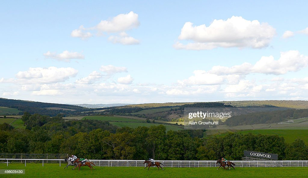 Martin Dwyer riding Serena Grae (L) win The Hildon Natural Mineral Water Stakes at Goodwood racecourse on September 24, 2014 in Chichester, England.