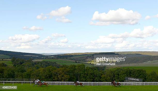 Martin Dwyer riding Serena Grae win The Hildon Natural Mineral Water Stakes at Goodwood racecourse on September 24 2014 in Chichester England